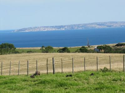 43 hectare Estate for sale