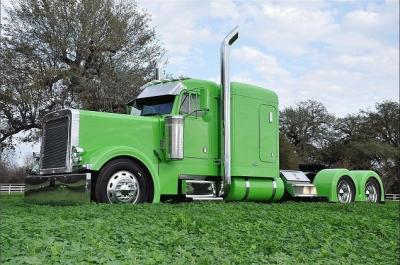 2001 Peterbilt 379EXHD Green