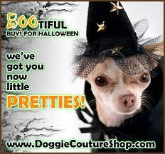 Latest Collection of Luxury Pet Boutique Online