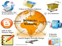 Dynamic website development in India