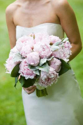 Vanda Florist - Calgary Online Flower Shop