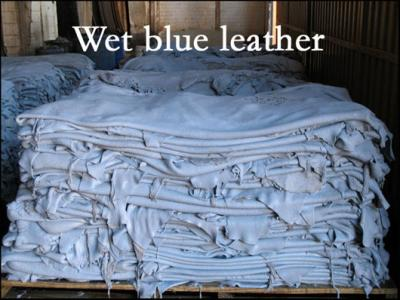 Wet Blue Leather Exporter