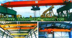 LDA Electric Single Girder Crane