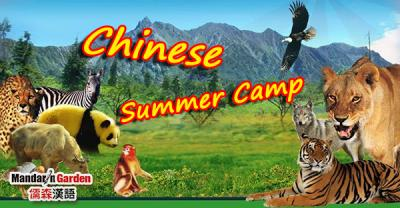 Learn Chinese in Shanghai Summer Camp with lovely animals
