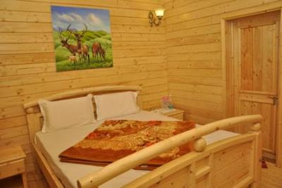 Honeymoon Package in Ooty ( 3 Nights / 4 Days )