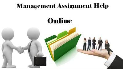 Best Management Case Study Assignment Help Now Online Only for You