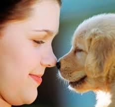 Pet Health Services ? Preventative Veterinary Clinic Edmonton