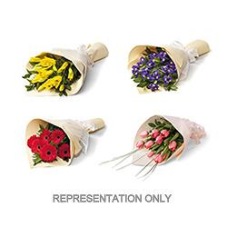 The Most Stylish, Fresh & Beautiful Online Florists Company In New Zealand