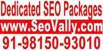 Get Top 10 Ranking With Higrade SEO