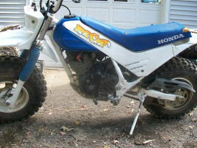 1986 Honda TR 200 Fat cat - $1800 (Palmyra)