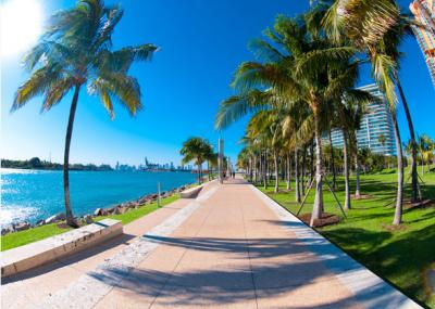 Special offers on Flight Tickets to Miami- Compareandfly