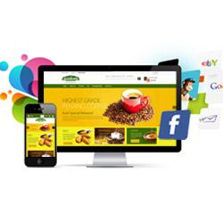 E-Commerce Website Designing Services Australia