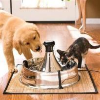 Pet Me offers quality pet products and accessories for a healthier, happier pet