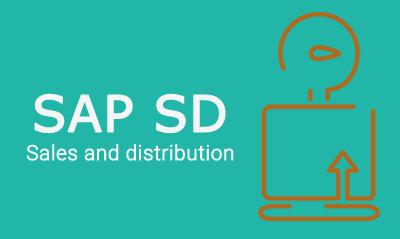The Best SAP SD Training