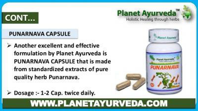 Ayurvedic Concept of Punarnava
