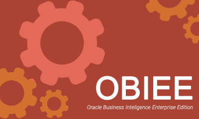 Perfect OBIEE Training