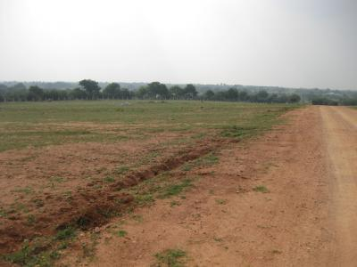 pollution free green looking plots per sq yad rs.1900 at hyderabad (india)