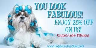 Best Collection of Luxury Pet Boutique