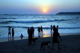 Tour and Travel package at Goa