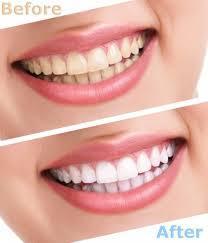 Dentists in Cambodia