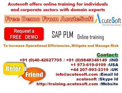 SAP PLM | Online PLM training