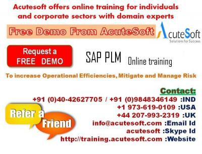 SAP PLM online training