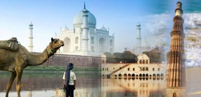 Are you looking for best travel packages?