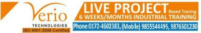 6 Months/ Weeks Industrial Trainings on Live Projects