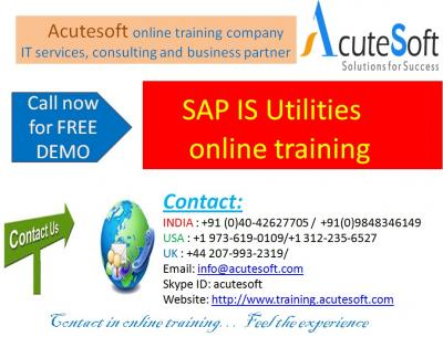 SAP IS Utilities   Online Training with Project Case Studies-AcuteSoft