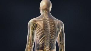 Reconstructive Spine Surgery