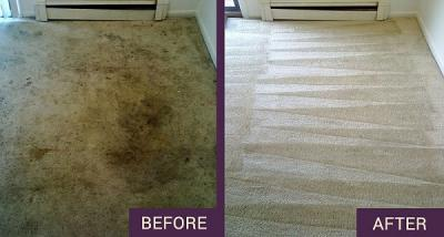 Carpet Cleaning Sutton | Quality Service at Best Price