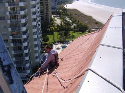 Bat Removal Service in Port St. Lucie, Florida
