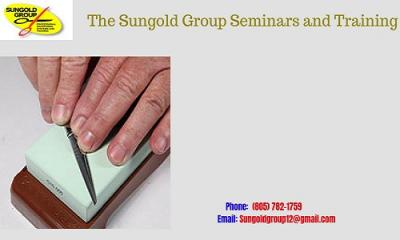 The Sungold Group Seminars and Training