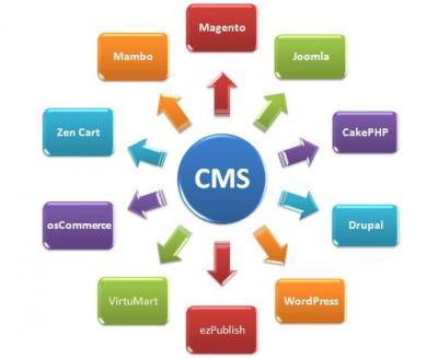 Get Flexible and Powerful CMS Web Development.