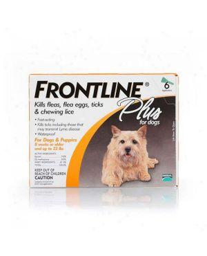 Flea and Tick - Dog
