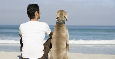 South Carolina beach pet-friendly vacation rentals