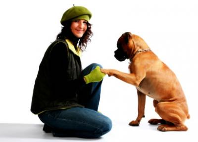 Dog shock collar for training makes your pet