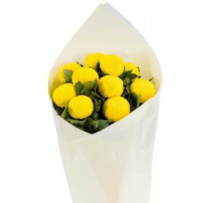 Melbourne Flowers Online - Same Day Flower Deliver