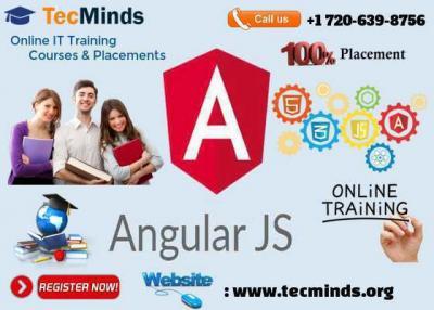 Angular JS Online IT Training I USA I TecMinds