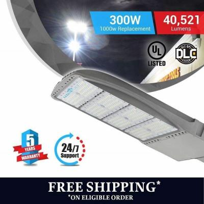 Seamless Design LED Pole Light SILVER finish