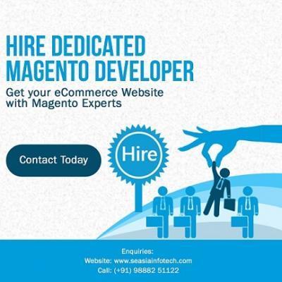 Hire Affordable Magento Developer
