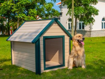 Get the best eco-friendly bunk house for large dog