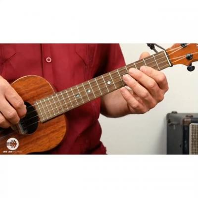Learn To Play The Ukulele For Beginner
