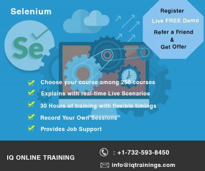 Live Interactive Selenium Online Training
