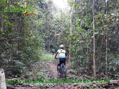 Vietnam Holiday -Saigon-Dalat-Mui Ne Beach By Bike