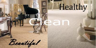 Carpet Steam Cleaning 3 Rooms, Hall & Steps $129