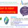 SAP BI ABAP  Online Training with Project Case Studies-AcuteSoft